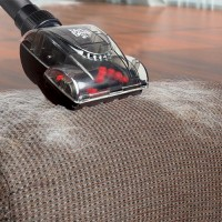 Entretien des moquettes, fauteuils, tapis - Brosses d'aspirateur Dirt Devil