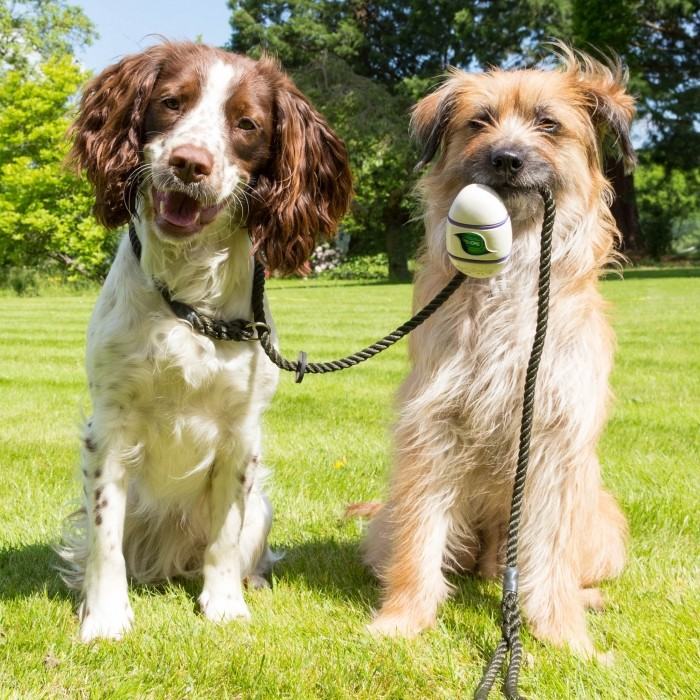 Accessoires chien - Ramasse-crottes Beco Pocket pour chiens