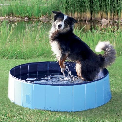 Accessoires chien - Piscine pour chien pour chiens