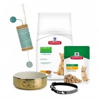 Kit pour chaton - Hill's Kit Chaton
