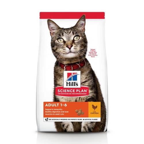Alimentation pour chat - Hill's Science plan Adult Poulet pour chats