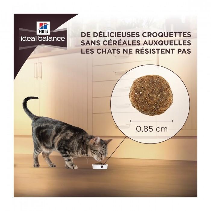 Alimentation pour chat - HILL'S Ideal Balance No Grain Mature Adult pour chats