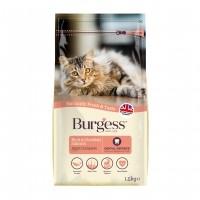 Croquettes pour chat - Burgess Chat Adulte - Saumon