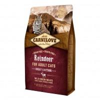 Alimentation pour chat - CARNILOVE