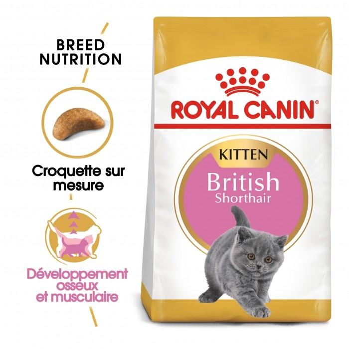 Alimentation pour chat - Royal Canin British Shorthair Kitten pour chats