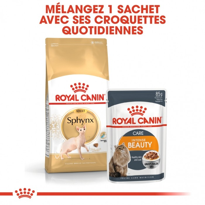 Alimentation pour chat - Royal Canin Sphynx Adult pour chats