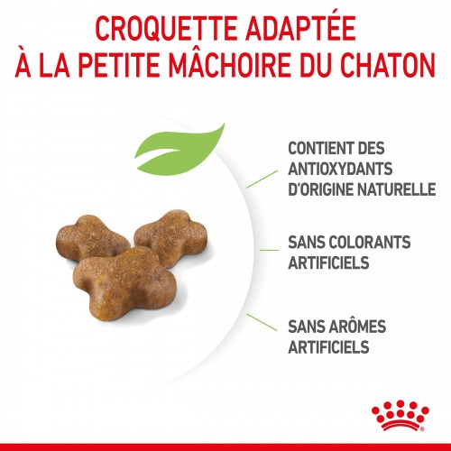 Alimentation pour chat - Royal Canin Kitten Second Age pour chats
