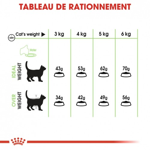 Alimentation pour chat - Royal Canin Digestive Care pour chats