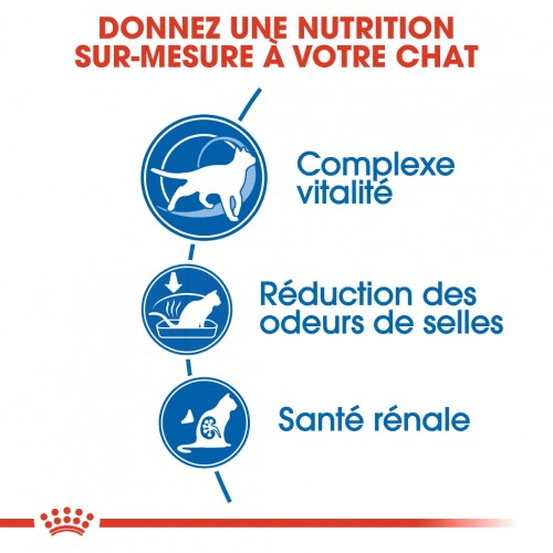 Alimentation pour chat - Royal Canin Indoor 7+ pour chats