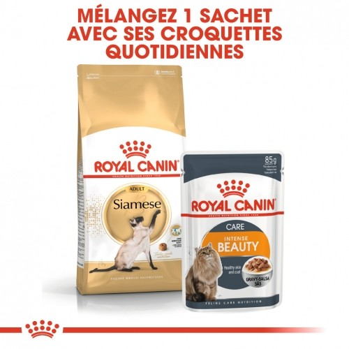 Alimentation pour chat - Royal Canin Siamois Adult pour chats