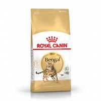 Croquettes pour chat - ROYAL CANIN Breed Nutrition Bengal
