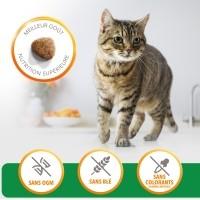 Croquettes pour chat - IAMS Adult à l'agneau & poulet