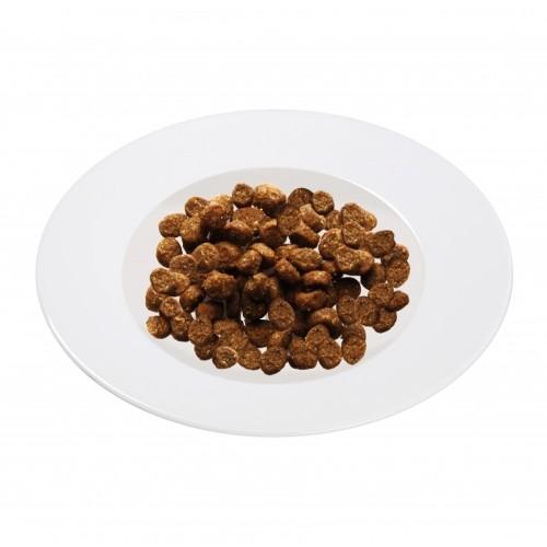 Alimentation pour chat - Schesir Adult Maintenance  pour chats