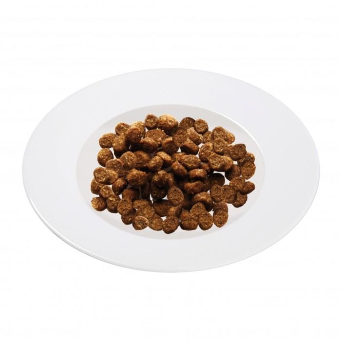 Alimentation pour chat - Schesir  Sterilized & Light pour chats