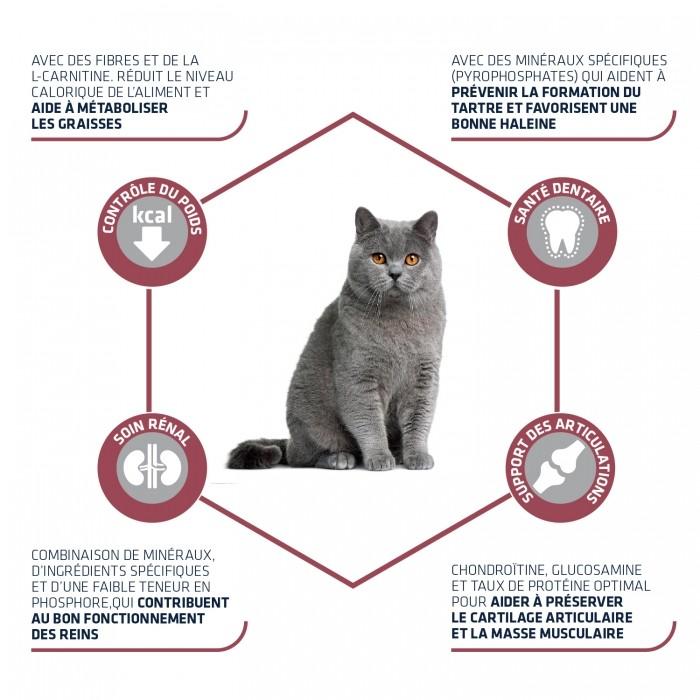Alimentation pour chat - ADVANCE Sterilized +10 pour chats