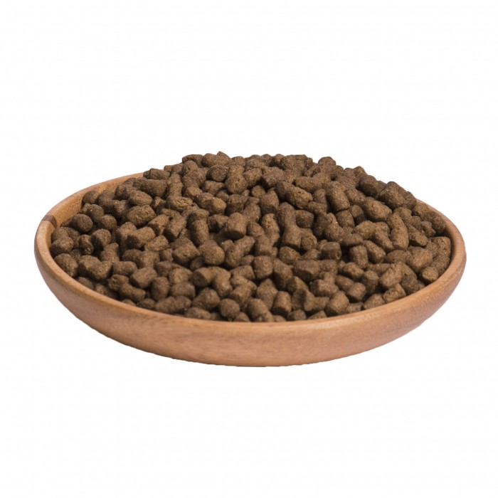 Alimentation pour chat - Wellness CORE Ocean - Saumon et Thon pour chats