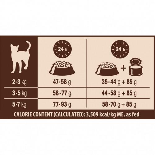 Alimentation pour chat - Wellness CORE Sterilised - Saumon pour chats