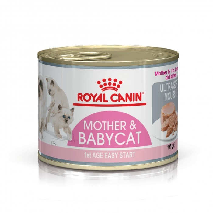 Royal Canin Mother Amp Babycat P 226 T 233 E En Bo 238 Te Pour Chaton