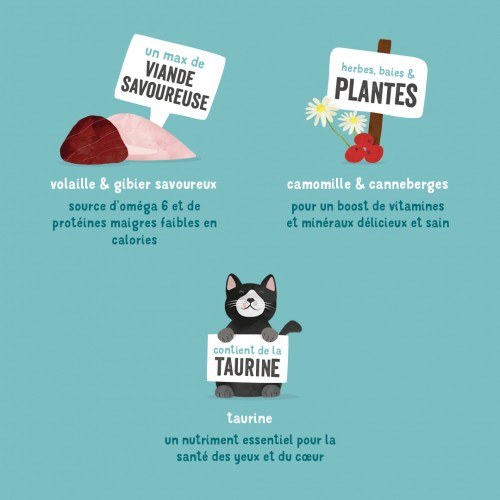 Alimentation pour chat - Edgard & Cooper, pâtée en barquettes pour chat adulte pour chats