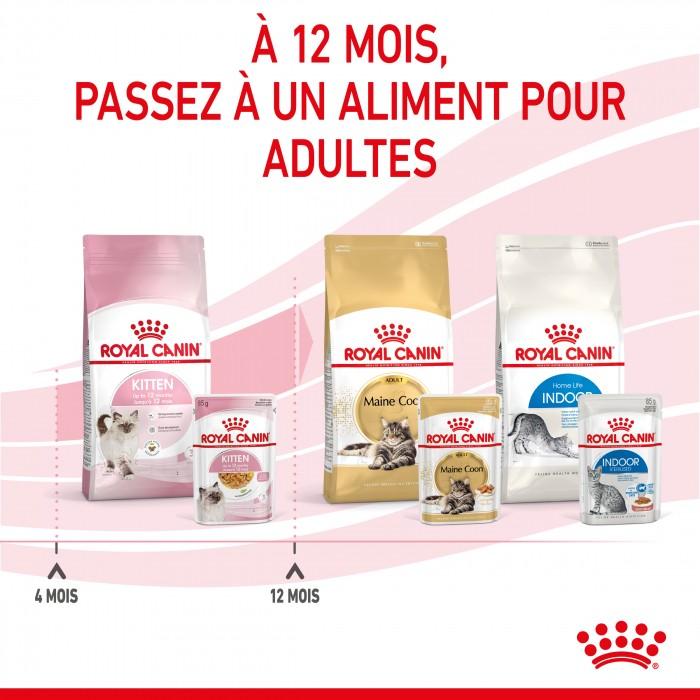 Alimentation pour chat - Royal Canin Kitten - Gelées pour chaton pour chats