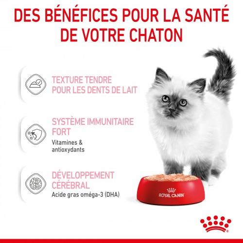 Alimentation pour chat - Royal Canin Kitten - Mousses pour chaton pour chats
