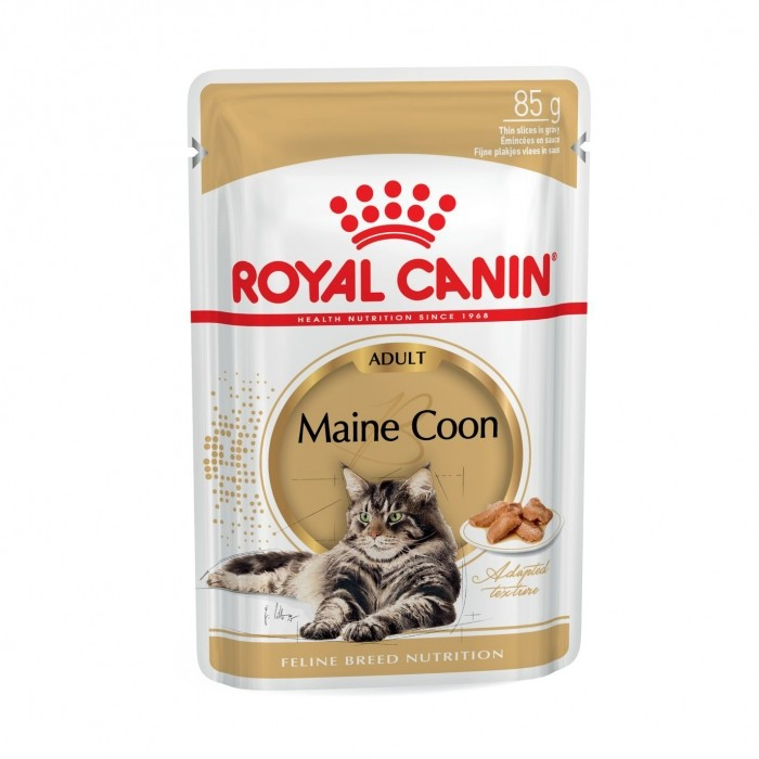 Royal Canin Maine Coon-Maine Coon Adult sauce