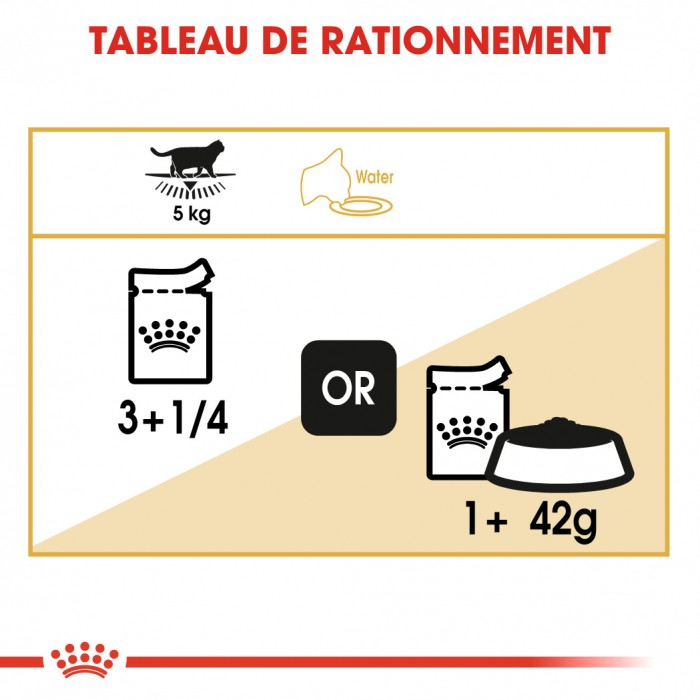 Alimentation pour chat - Royal Canin British Shorthair - Pâtée en sachet pour chat pour chats