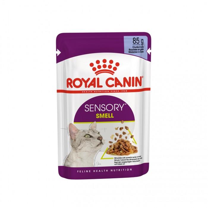 Alimentation pour chat - Royal Canin Sensory Smell pour chats