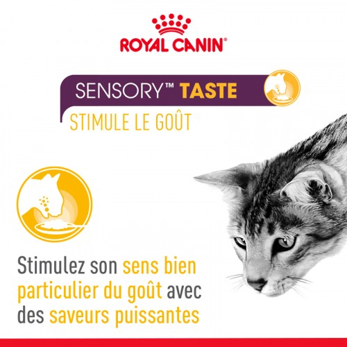 Alimentation pour chat - Royal Canin Sensory Multipack pour chats