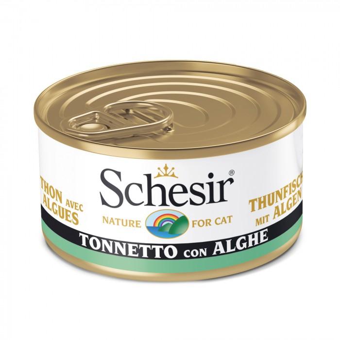Alimentation pour chat - Schesir Pâtée en gelée Adult - Lot 6 x 85 g pour chats