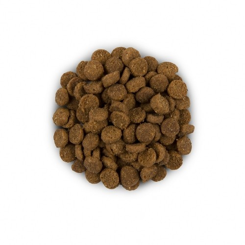 Alimentation pour chat - Hill's Prescription Diet i/d Digestive Care - Croquettes pour chat pour chats