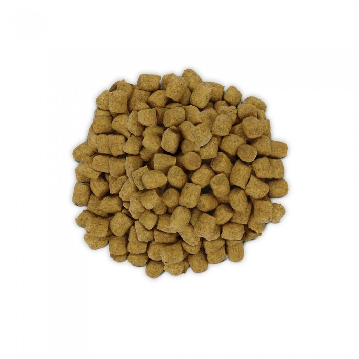 Alimentation pour chat - Hill's Prescription Diet w/d Digestive Management - Croquettes pour chat pour chats