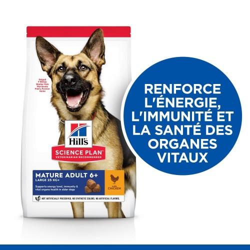 Alimentation pour chien - Hill's Science Plan Mature Large Adult 6+ pour chiens