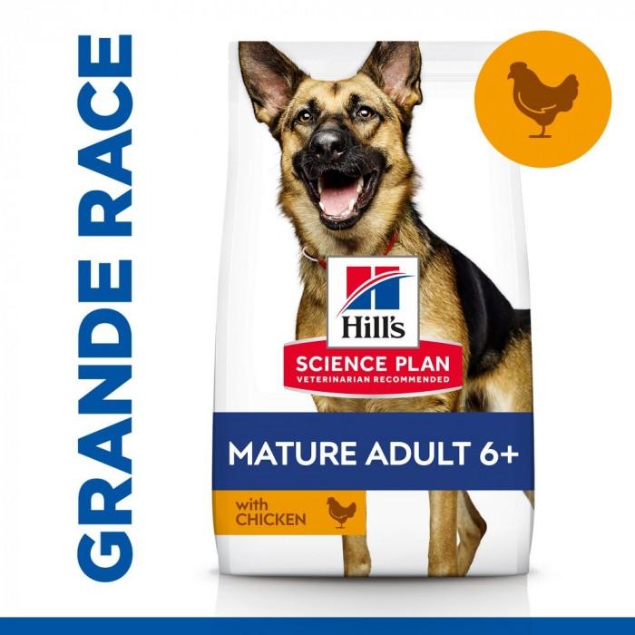 Boutique senior - Hill's Science Plan Mature Large Adult 6+ pour chiens