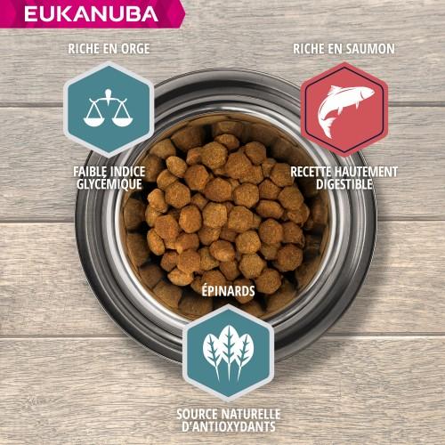 Alimentation pour chien - Eukanuba Adulte Large Breed - Saumon et orge pour chiens
