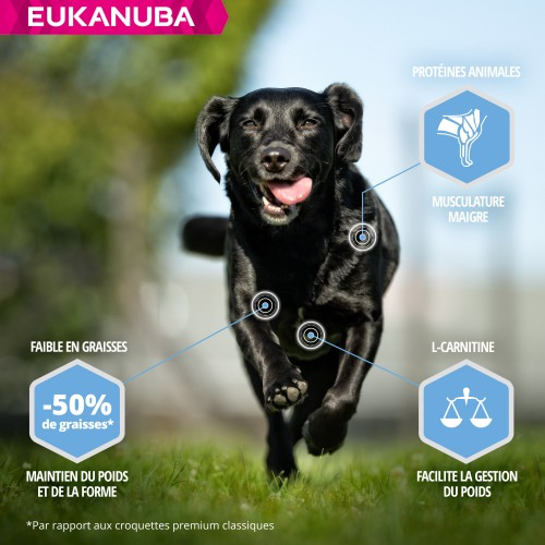 Alimentation pour chien - Eukanuba Daily Care Weight Control Large Breed pour chiens