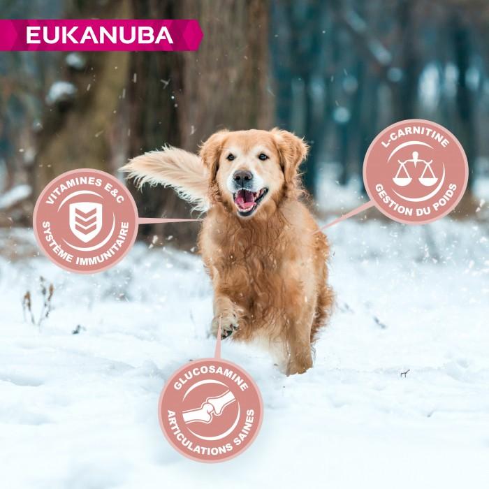 Alimentation pour chien - Eukanuba Senior Medium Breed - Poulet pour chiens