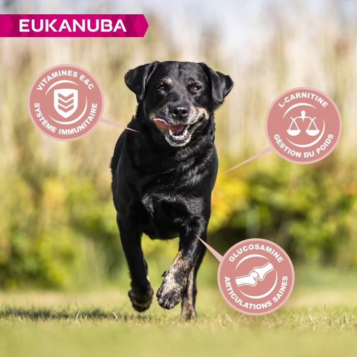Alimentation pour chien - Eukanuba Senior Large Breed pour chiens