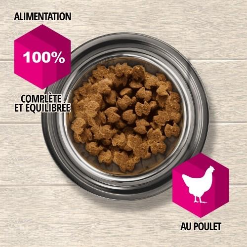 Alimentation pour chien - Eukanuba Daily Care Sensitive Joints pour chiens