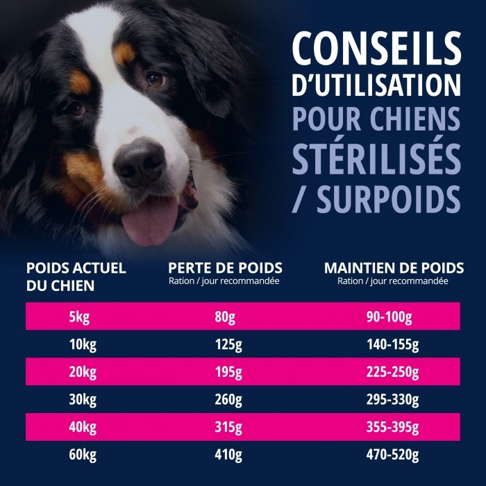 Alimentation pour chien - Eukanuba Daily Care Overweight/Sterilised pour chiens