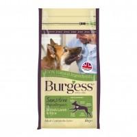 Croquettes pour chien - Burgess Sensitive Chien - Agneau et riz