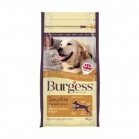 Croquettes pour chien - Burgess Sensitive Chien - Dinde et riz