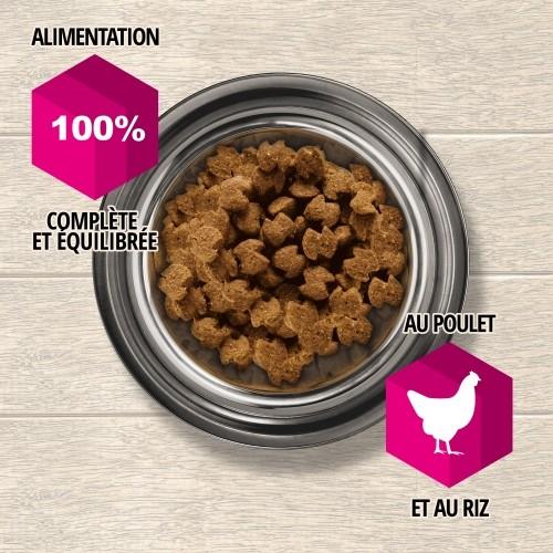 Alimentation pour chien - Eukanuba Daily Care Sensitive Digestion pour chiens