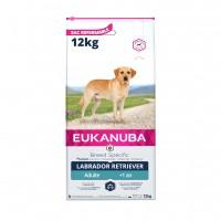 Croquettes pour chien - Eukanuba Breed Specific Labrador Retriever