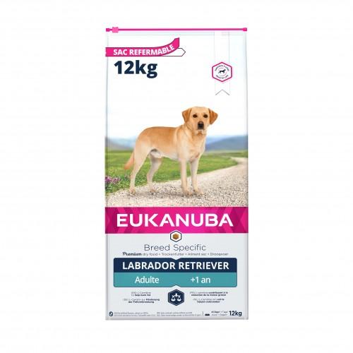 Alimentation pour chien - Eukanuba Labrador Retriever pour chiens