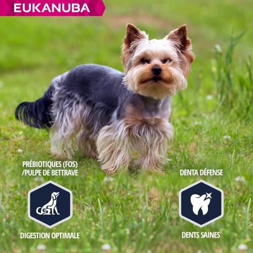 Alimentation pour chien - Eukanuba Breed Specific Yorkshire Terrier pour chiens