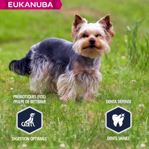 Alimentation pour chien - Eukanuba Yorkshire Terrier pour chiens