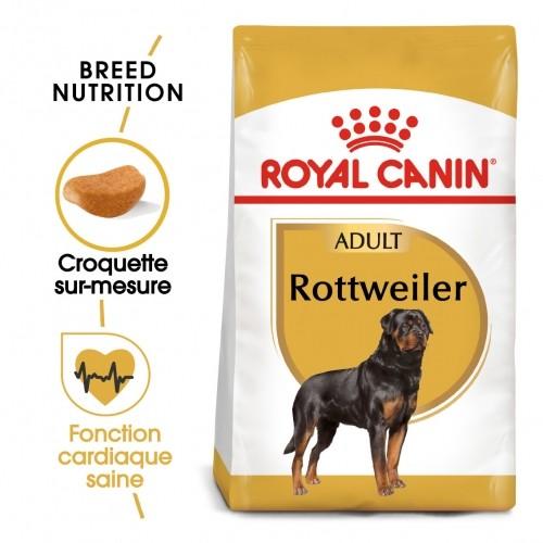 Alimentation pour chien - Royal Canin Rottweiler Adult pour chiens