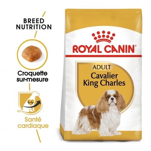 Alimentation pour chien - Royal Canin Cavalier King Charles Adult pour chiens