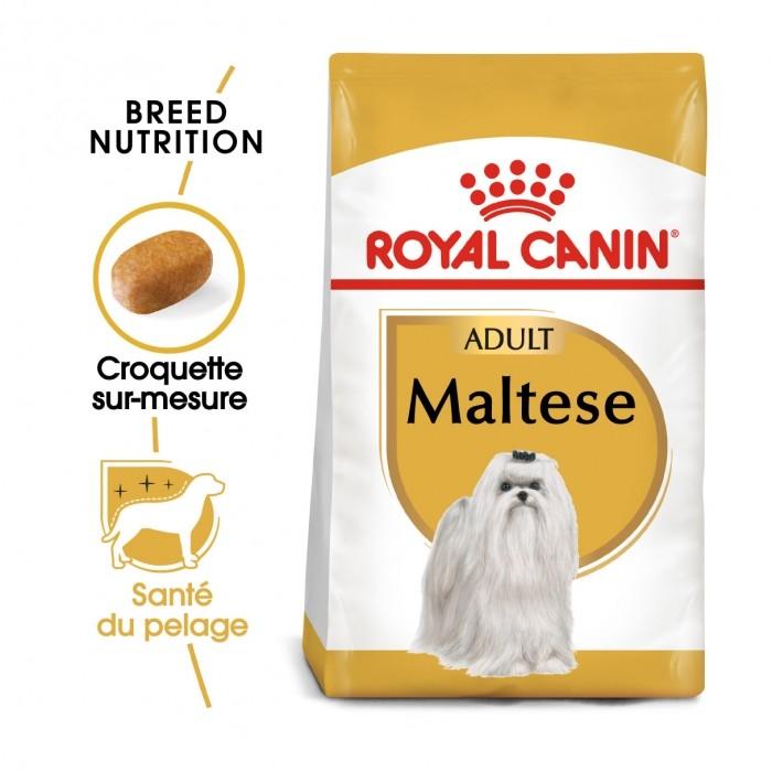 Alimentation pour chien - Royal Canin Bichon Maltais Adult pour chiens